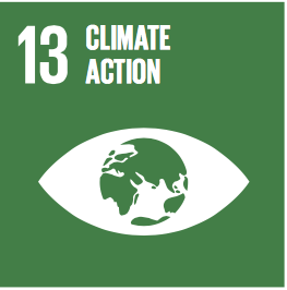 Sustainable Development Goals Badge 13: Climate action