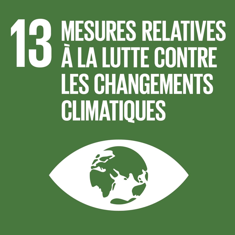 SUSTAINABLE DEVELOPMENT GOAL 13: PRENDRE D'URGENCE DES MESURES POUR LUTTER CONTRE LES CHANGEMENTS CLIMATIQUES ET LEURS RÉPERCUSSIONS