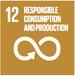 Sustainable Development Goals Badge 12: responsibe consumption and production